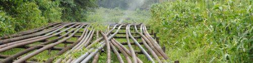 Place du carburant nigérian dans le réservoir socio-économique béninois